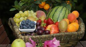 «UE : une double stratégie pour la biodiversité et une alimentation de qualité»