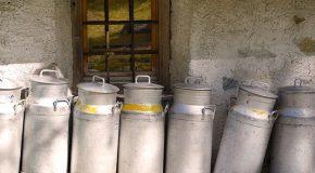 Lait et produits laitiers : l'étiquetage de l'origine non obligatoire