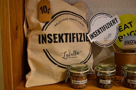 #aliments-insectes
